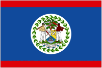 Country Code +501 flag image