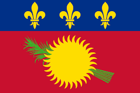 Country Code +590 flag image